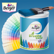 Berger Colour